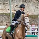 Caribbean Equestrian Association Regional Jumping Challenge Bermuda, November 16 2019-2122