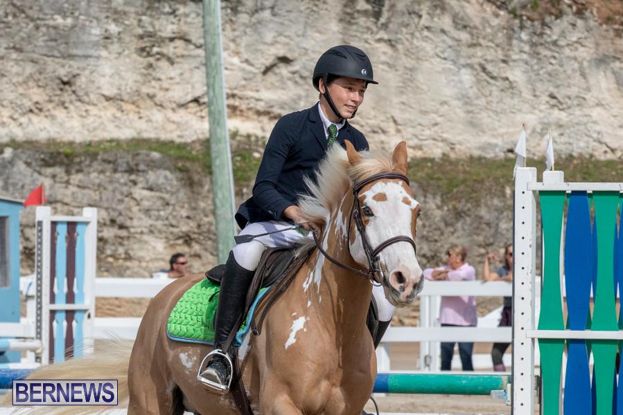 Caribbean-Equestrian-Association-Regional-Jumping-Challenge-Bermuda-November-16-2019-2122