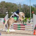 Caribbean Equestrian Association Regional Jumping Challenge Bermuda, November 16 2019-2124