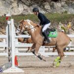 Caribbean Equestrian Association Regional Jumping Challenge Bermuda, November 16 2019-2129