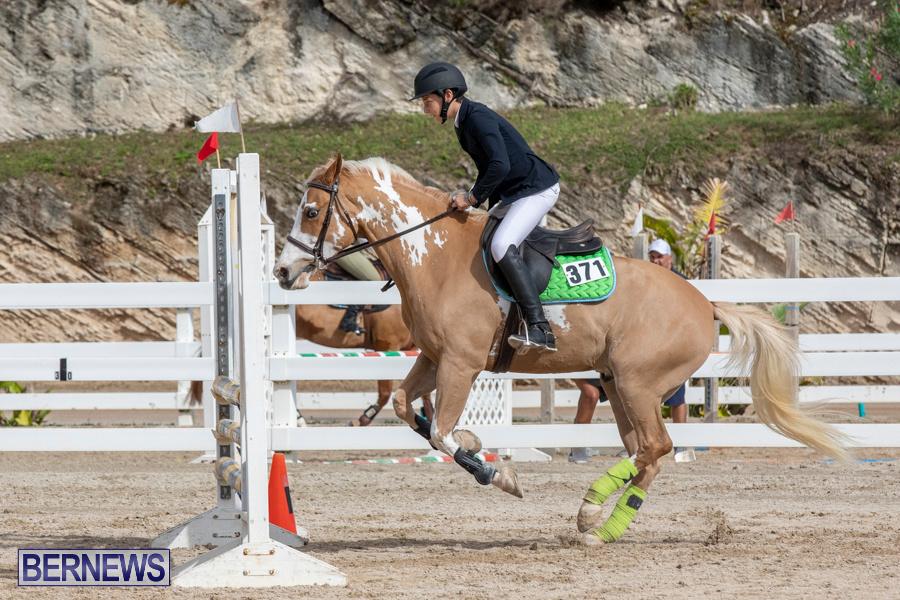 Caribbean-Equestrian-Association-Regional-Jumping-Challenge-Bermuda-November-16-2019-2129