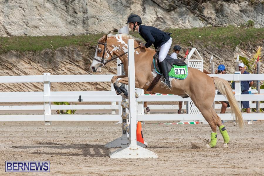 Caribbean-Equestrian-Association-Regional-Jumping-Challenge-Bermuda-November-16-2019-2130
