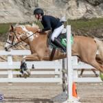 Caribbean Equestrian Association Regional Jumping Challenge Bermuda, November 16 2019-2131
