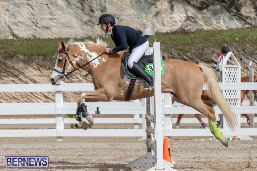 Caribbean-Equestrian-Association-Regional-Jumping-Challenge-Bermuda-November-16-2019-2131