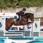 Caribbean Equestrian Association Regional Jumping Challenge Bermuda, November 16 2019-2135