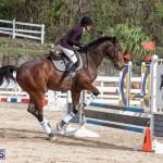 Caribbean Equestrian Association Regional Jumping Challenge Bermuda, November 16 2019-2141