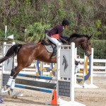 Caribbean Equestrian Association Regional Jumping Challenge Bermuda, November 16 2019-2143