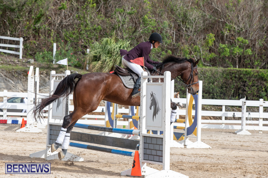 Caribbean-Equestrian-Association-Regional-Jumping-Challenge-Bermuda-November-16-2019-2143