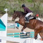 Caribbean Equestrian Association Regional Jumping Challenge Bermuda, November 16 2019-2150