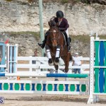 Caribbean Equestrian Association Regional Jumping Challenge Bermuda, November 16 2019-2158