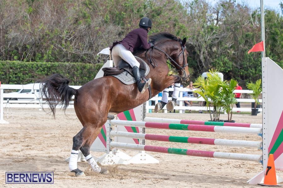Caribbean-Equestrian-Association-Regional-Jumping-Challenge-Bermuda-November-16-2019-2162