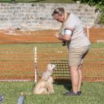 Devil's Isle All Breed Club 2019 Bermuda International Dog Shows Bermuda, November 2 2019-0723