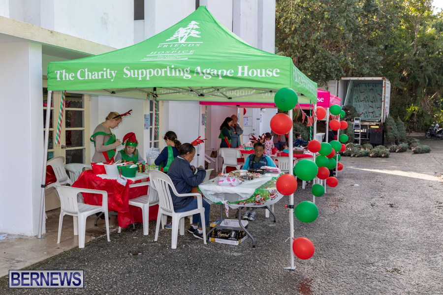 Friends-of-Hospice-Christmas-Town-Bermuda-November-30-2019-4284