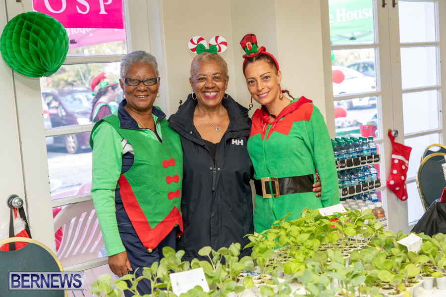 Friends-of-Hospice-Christmas-Town-Bermuda-November-30-2019-4307