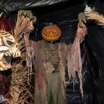 Halloween Bermuda, October 31 2019-0241