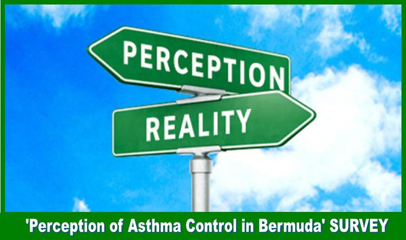 Open Airways Perception Survey Bermuda Nov 2019