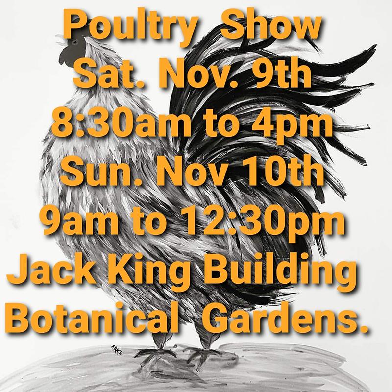 Poultry Fanciers Jamboree Bermuda Nov 2019