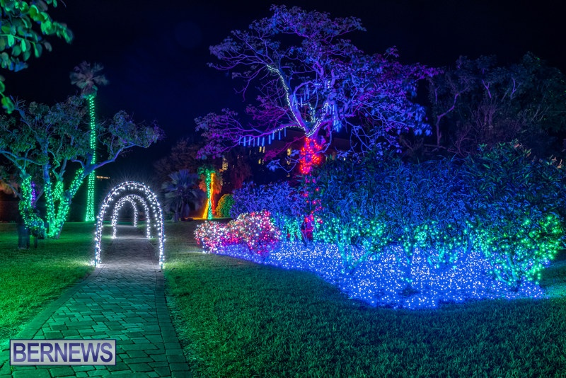 2019 BELCO Festival Of Lights Botanical Gardens Bermuda (12)