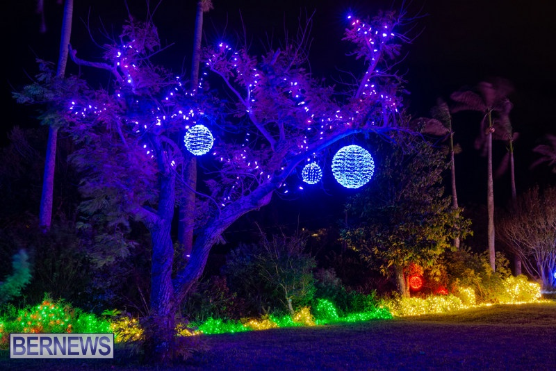 2019 BELCO Festival Of Lights Botanical Gardens Bermuda (3)
