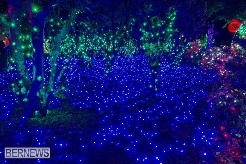 2019 BELCO Festival Of Lights Botanical Gardens Bermuda (8)