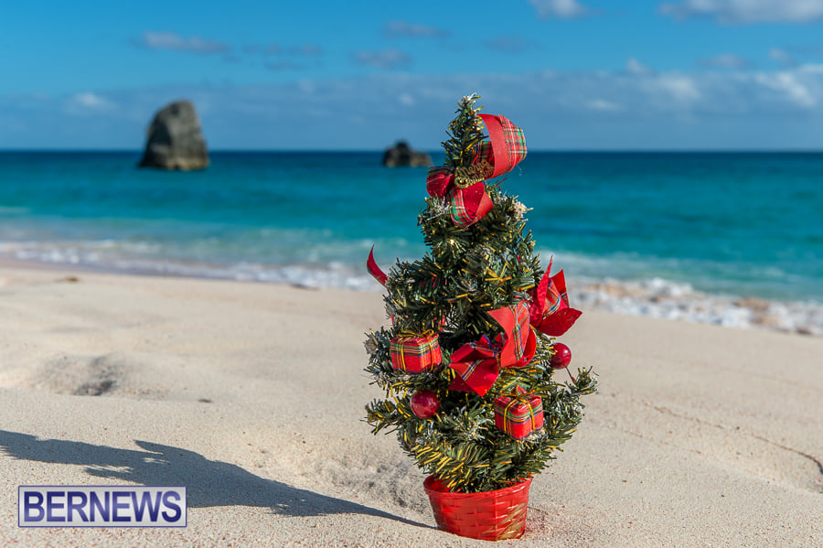 516 - Christmas time in Bermuda as seen at Warwick Long Bay