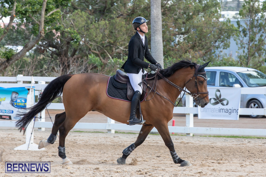Bermuda-Equestrian-Federation-Welcome-Home-Show-December-7-2019-0453
