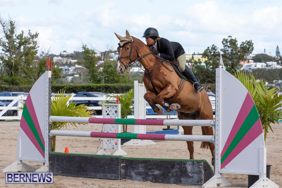 Bermuda-Equestrian-Federation-Welcome-Home-Show-December-7-2019-0461