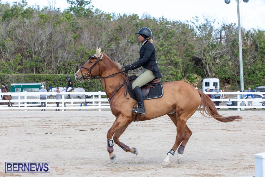 Bermuda-Equestrian-Federation-Welcome-Home-Show-December-7-2019-0465