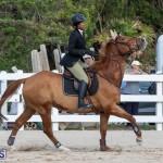 Bermuda Equestrian Federation Welcome Home Show, December 7 2019-0477