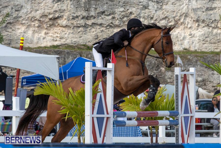 Bermuda-Equestrian-Federation-Welcome-Home-Show-December-7-2019-0481