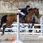 Bermuda Equestrian Federation Welcome Home Show, December 7 2019-0484