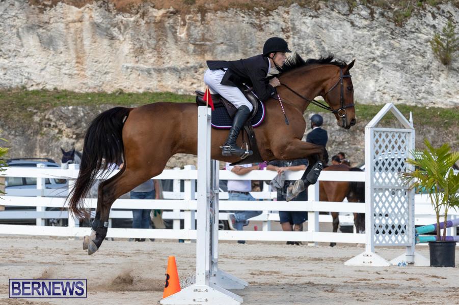 Bermuda-Equestrian-Federation-Welcome-Home-Show-December-7-2019-0484