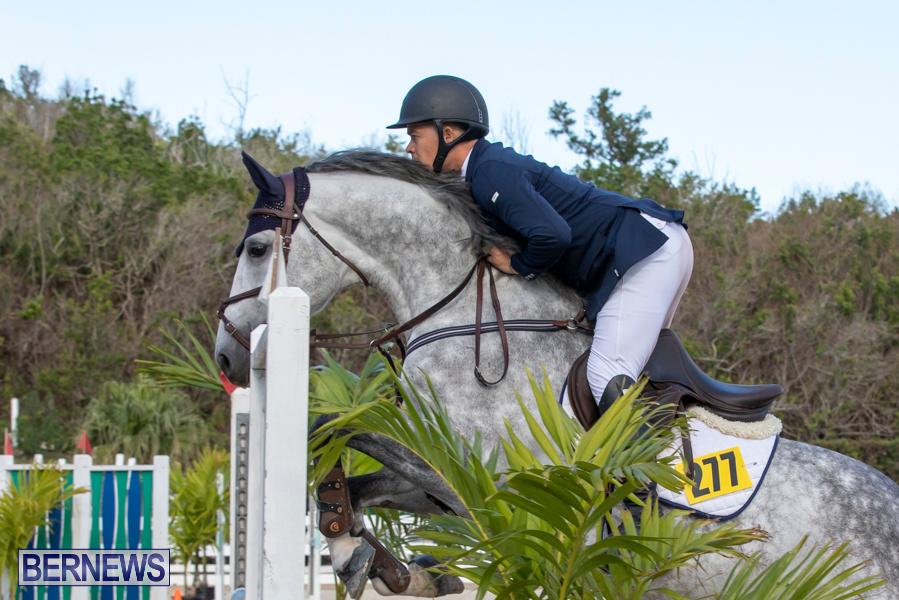 Bermuda-Equestrian-Federation-Welcome-Home-Show-December-7-2019-0502