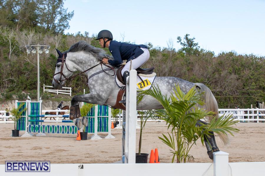 Bermuda-Equestrian-Federation-Welcome-Home-Show-December-7-2019-0503