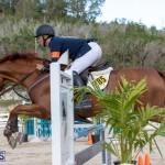 Bermuda Equestrian Federation Welcome Home Show, December 7 2019-0525