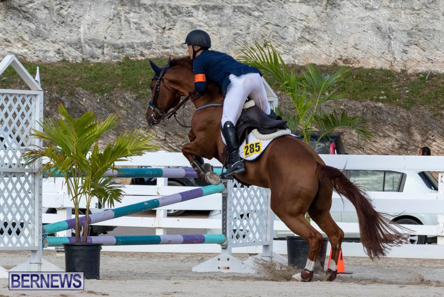 Bermuda-Equestrian-Federation-Welcome-Home-Show-December-7-2019-0533