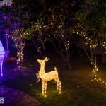 Christmas Wonderland at Somers Gardens in St. George's Bermuda, December 21 2019-5271