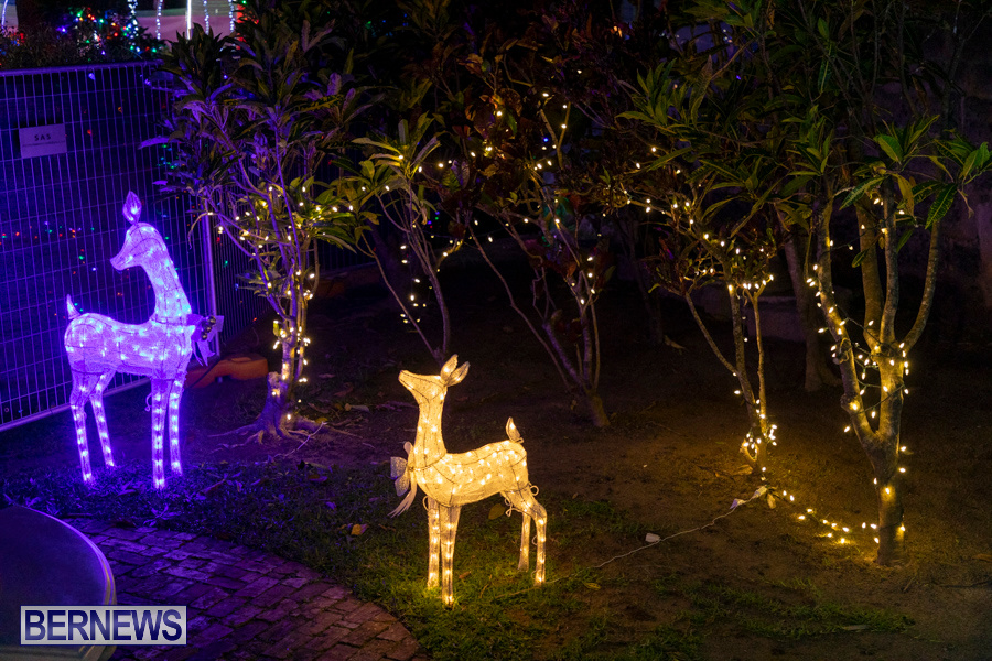Christmas-Wonderland-at-Somers-Gardens-in-St.-Georges-Bermuda-December-21-2019-5271