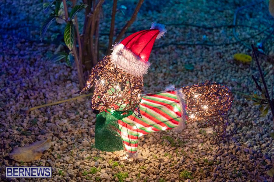 Christmas-Wonderland-at-Somers-Gardens-in-St.-Georges-Bermuda-December-21-2019-5475