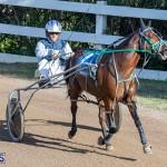 DHPC Harness Pony Racing Bermuda, December 26 2019-5967