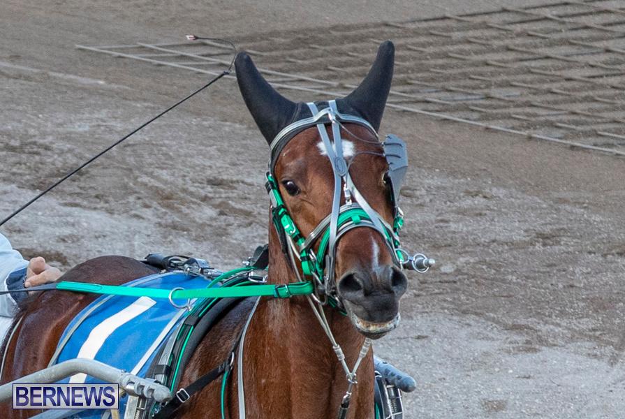 DHPC-Harness-Pony-Racing-Bermuda-December-26-2019-5979