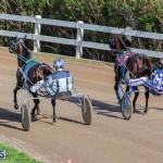 DHPC Harness Pony Racing Bermuda, December 26 2019-5983