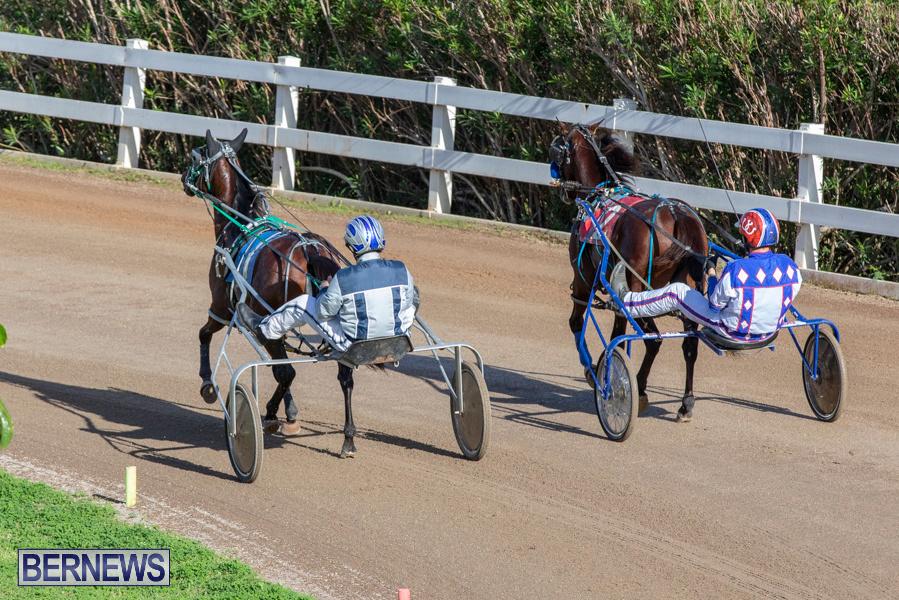 DHPC-Harness-Pony-Racing-Bermuda-December-26-2019-5983