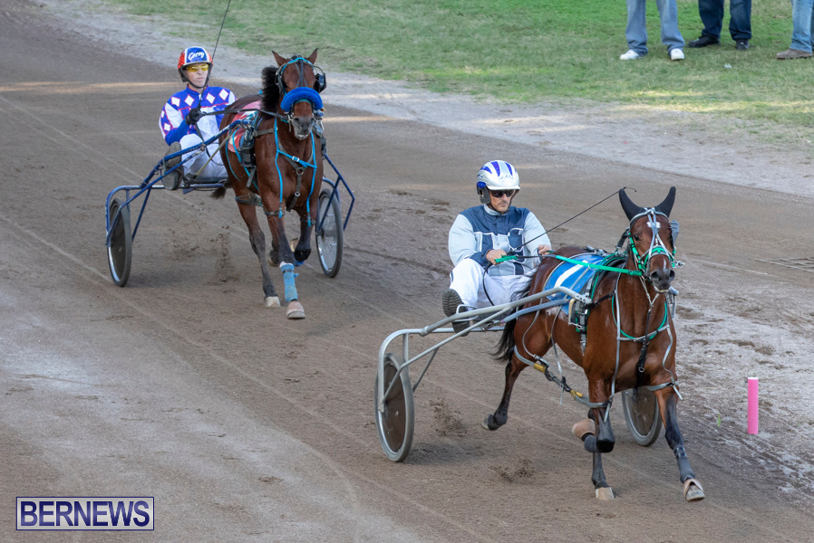 DHPC-Harness-Pony-Racing-Bermuda-December-26-2019-5991