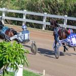 DHPC Harness Pony Racing Bermuda, December 26 2019-6004