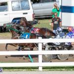 DHPC Harness Pony Racing Bermuda, December 26 2019-6005