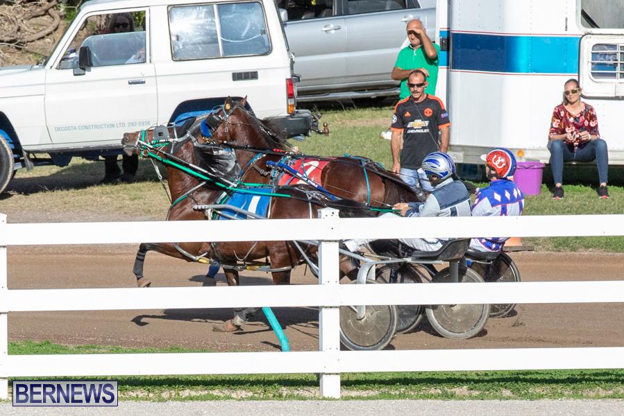 DHPC-Harness-Pony-Racing-Bermuda-December-26-2019-6005
