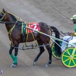 DHPC Harness Pony Racing Bermuda, December 26 2019-6063