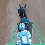DHPC Harness Pony Racing Bermuda, December 26 2019-6084