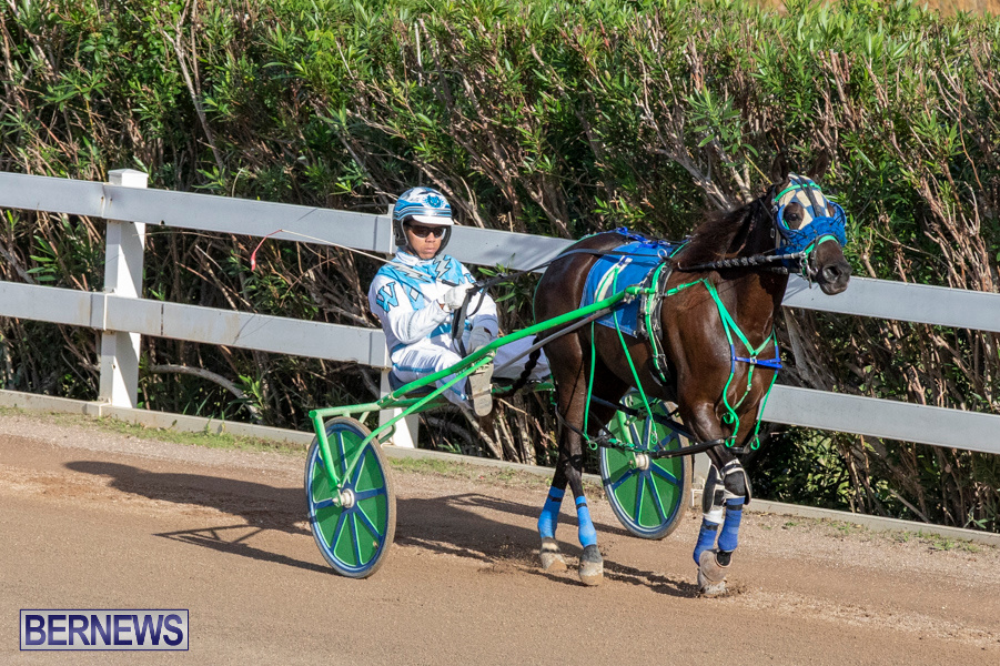DHPC-Harness-Pony-Racing-Bermuda-December-26-2019-6088